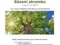Sázení stromků 1